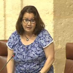 """Carmen Prieto: """"La Junta debe buscar una solución al retraso de hasta cinco años en las reconstrucciones mamarias de Carlos Haya"""""""