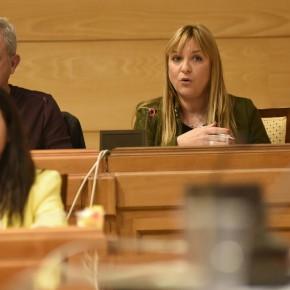 Ciudadanos cuestiona al equipo de gobierno por el coste para las arcas municipales de los espectáculos flamencos en la Casa de los Navajas
