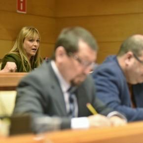 Ciudadanos se abstiene en la modificación del Convenio de Personal Laboral y vota a favor en las cuentas de 2015