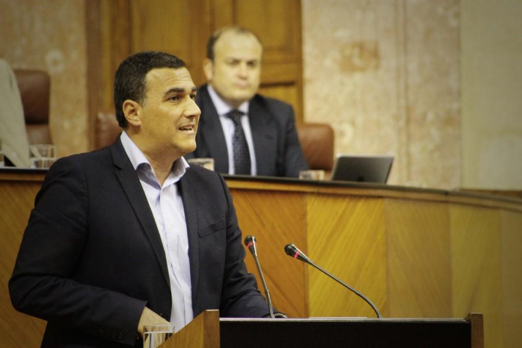 Carlos Hernandez Parlamento Andalucía febrero 2017 III