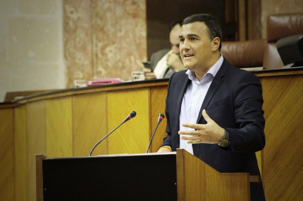 Carlos Hernandez Parlamento Andalucía
