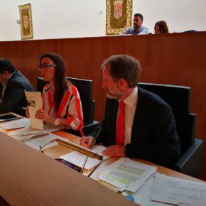 Diputación aprueba la moción de Cs para que una comisión independiente supervise la gestión del MAD y la compra de arte