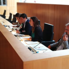 Ciudadanos logra que la Diputación lidere una estrategia provincial para reducir el sacrificio de animales
