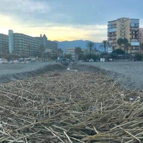 Ciudadanos lleva al próximo pleno la pasividad del equipo de gobierno en el cuidado de las playas de Torremolinos